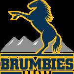 Brumbies Rugby